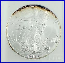 2001 $1 US Silver Eagle 1oz Silver Recovered at WTC Ground Zero Gorgeous Toning