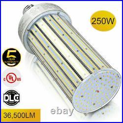 250W LED Corn Light Bulb, 36500LM 6000K Large E39 Mogul Base Cob Lamp UL DLC
